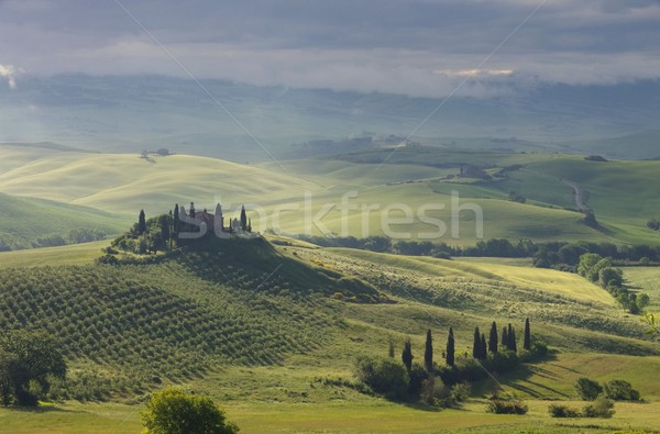 Tuscany house in fog 01 Stock photo © LianeM