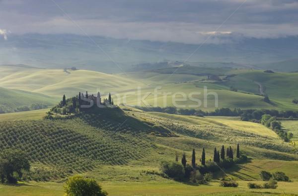 Тоскана дома тумана дерево весны пейзаж Сток-фото © LianeM