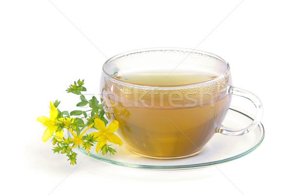 tea St Johns wort 01 Stock photo © LianeM