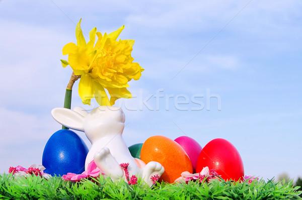 easter bunny on flower meadow 03 Stock photo © LianeM