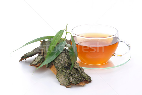 Chá salgueiro médico vidro fundo beber Foto stock © LianeM