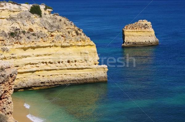 Plage 16 eau paysage océan bleu Photo stock © LianeM