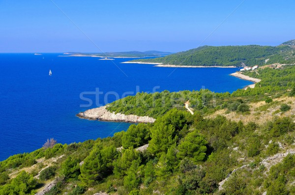 Hvar coast road  Stock photo © LianeM