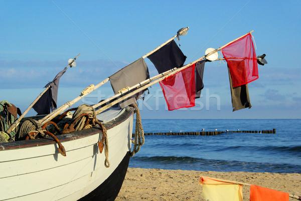 рыбалки пляж 18 рыбы морем лет Сток-фото © LianeM