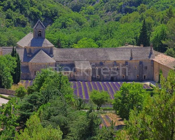 13 természet mező templom építészet Európa Stock fotó © LianeM