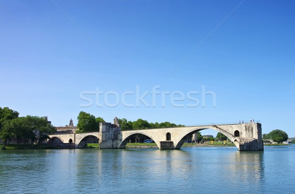 Avignon Bridge 07 Stock photo © LianeM