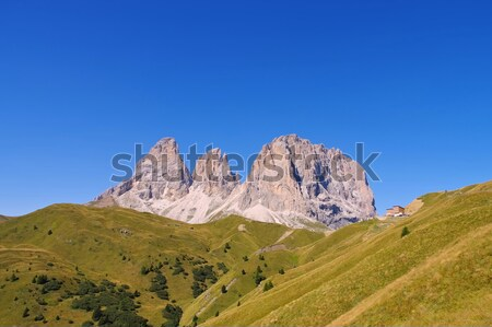 mountains Langkofel and Plattkofel in Dolomites Stock photo © LianeM