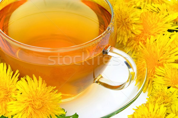tea dandelion  Stock photo © LianeM
