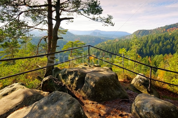 viewpoint Kleinsteinaussicht in Elbe Sandstone Mountains Stock photo © LianeM