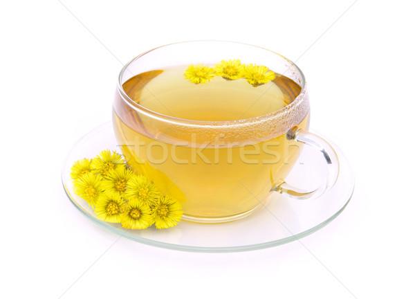 tea Coltsfoot 09 Stock photo © LianeM