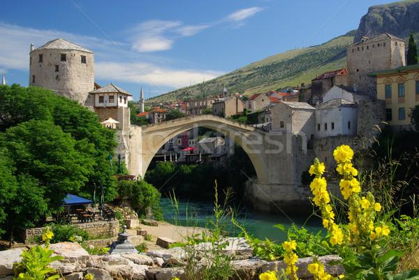 13 cielo fiore ponte blu fiume Foto d'archivio © LianeM