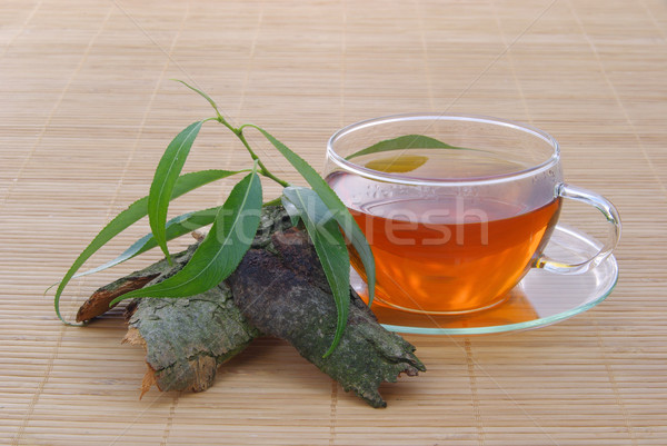 tea willow 01 Stock photo © LianeM