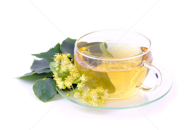 tea from lime blossom 02 Stock photo © LianeM