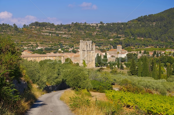old town Lagrasse in southern France Stock photo © LianeM