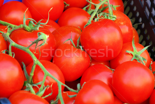 tomato 31 Stock photo © LianeM