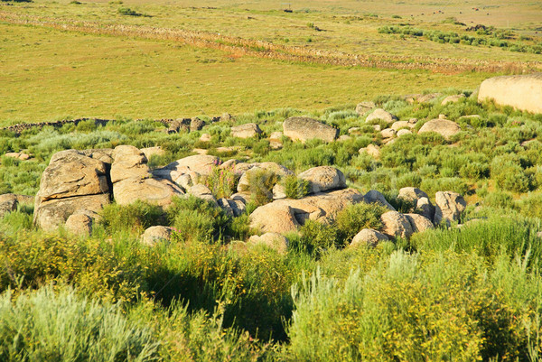 Valencia de Alcantara granite rock landscape 54 Stock photo © LianeM