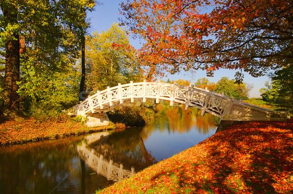 английский белый моста воды лист саду Сток-фото © LianeM