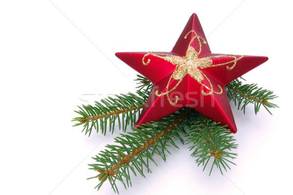 звездой веточка дерево красный золото белый Сток-фото © LianeM