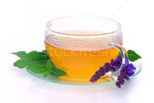 чай мудрец стекла фон пить Кубок Сток-фото © LianeM