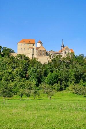 Castelo tijolo oliva torre medieval paredes Foto stock © LianeM