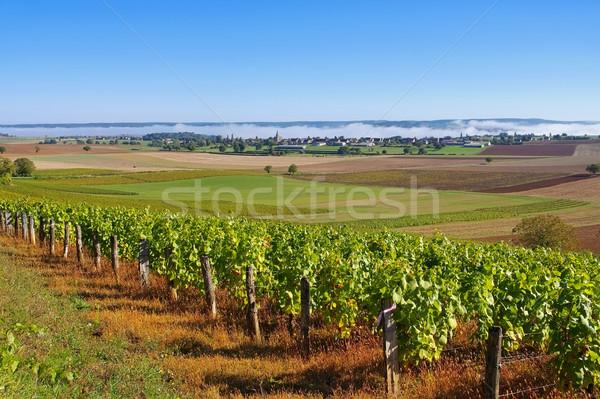 Klein dorp Frankrijk huis natuur veld Stockfoto © LianeM
