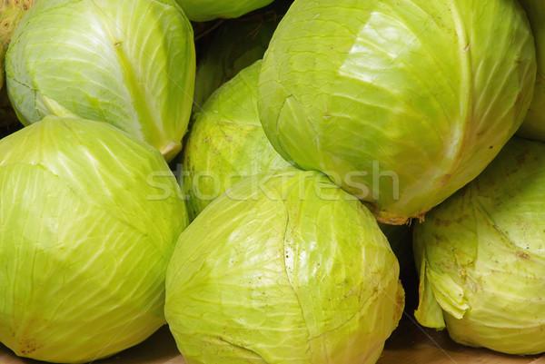 white cabbage 01 Stock photo © LianeM