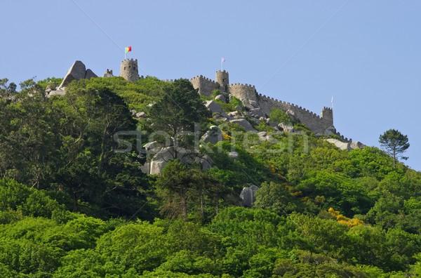 Sintra Castelo dos Mouros 01 Stock photo © LianeM