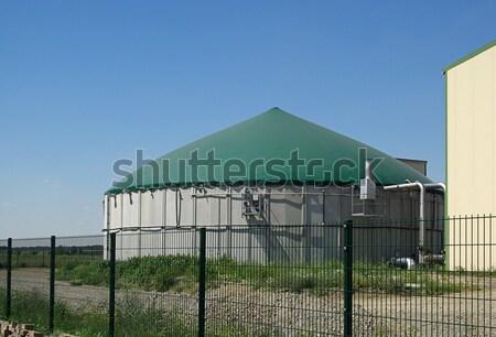 Biogáz növény 17 mező mezőgazdaság legelő Stock fotó © LianeM