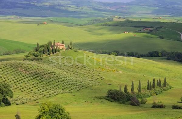 Tuscany house  Stock photo © LianeM