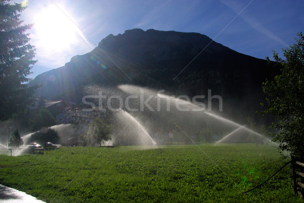 irrigation system 09 Stock photo © LianeM