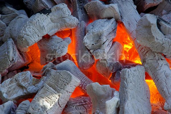 charcoal  Stock photo © LianeM