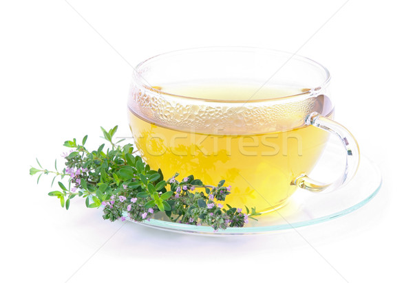 tea thymus 04 Stock photo © LianeM