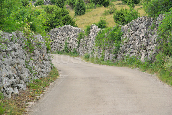 Cres dry stone wall and way 02 Stock photo © LianeM
