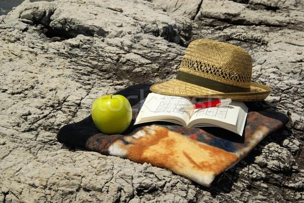 図書 太陽 フルーツ 夏 緑 岩 ストックフォト © LianeM