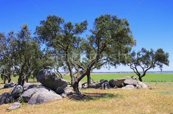Megalith and Holly Oak  Stock photo © LianeM