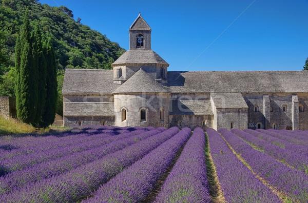 14 doğa alan kilise mimari Avrupa Stok fotoğraf © LianeM