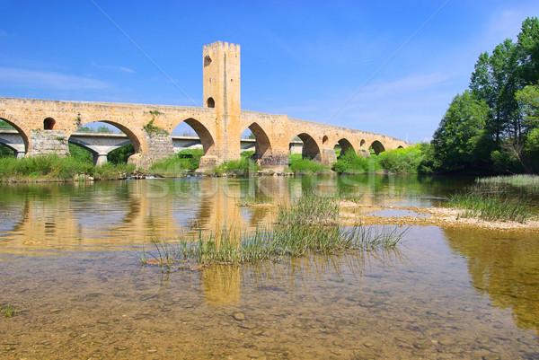Сток-фото: моста · небе · воды · каменные · реке · башни