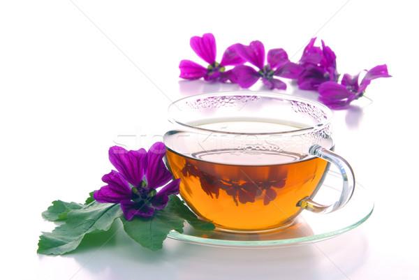 tea malva 10 Stock photo © LianeM