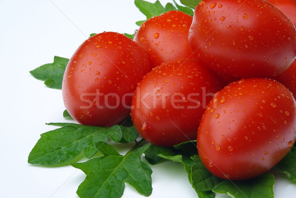 tomato 13 Stock photo © LianeM