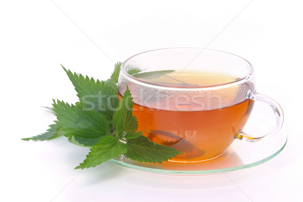 tea nettle 03 Stock photo © LianeM