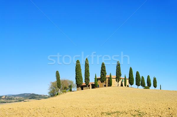 Vallen huis boom landschap zomer veld Stockfoto © LianeM