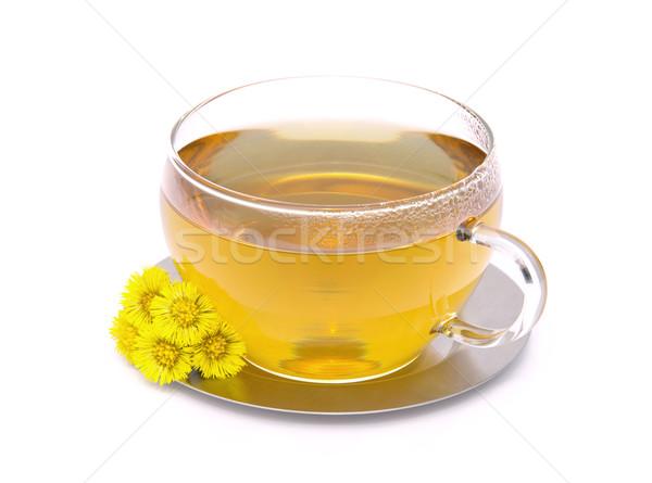tea Coltsfoot 01 Stock photo © LianeM