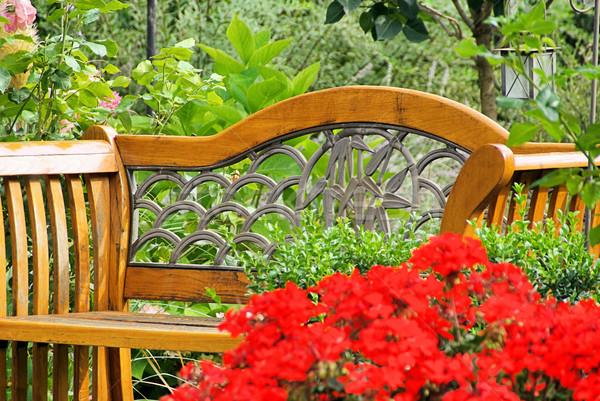 Stok fotoğraf: Bahçe · bank · çiçek · kırmızı · çiçek