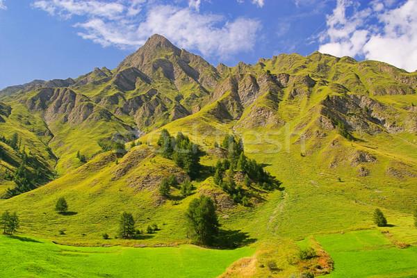 Samnaun Alps 02 Stock photo © LianeM