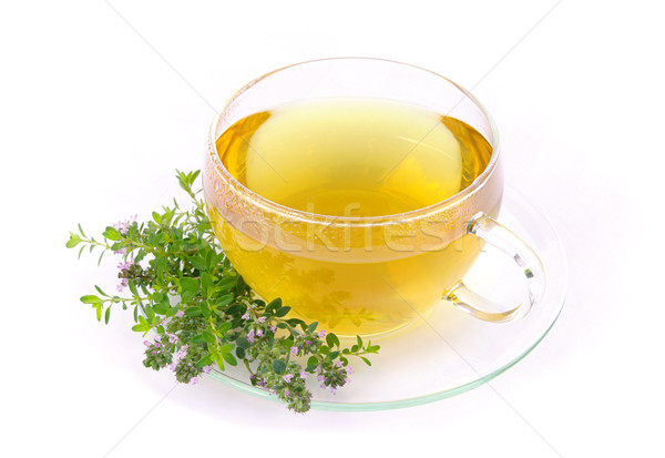 tea thymus 02 Stock photo © LianeM