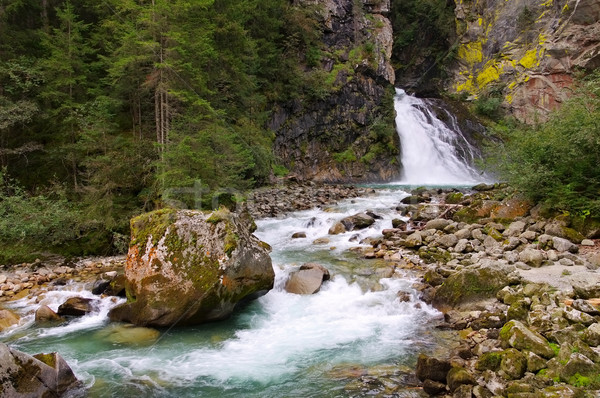 waterfall Reinfall in Alps Stock photo © LianeM
