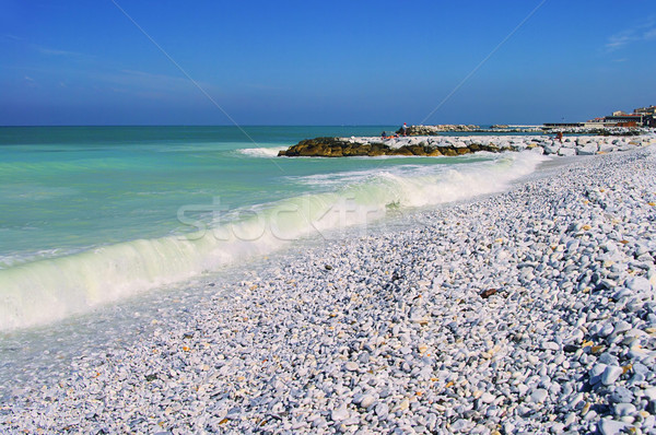 Pisa beach 05 Stock photo © LianeM