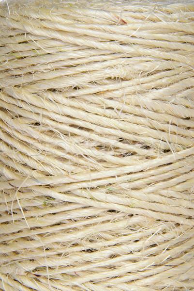 шнура текстуры мяча линия потока сильный Сток-фото © LianeM
