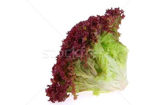 18 лист красный Салат растительное свежие Сток-фото © LianeM