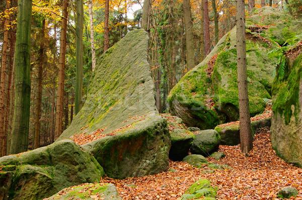 Arenaria rock foresta 15 panorama pietra Foto d'archivio © LianeM